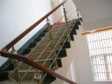 El bastidor de acero inoxidable 304 de la moda escaleras con pasamanos de madera maciza de Interior Design