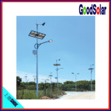 Indicatore luminoso di via solare ibrido IP65 nei fornitori dell'indicatore luminoso di via del LED