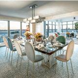 Нордический обедая стула отдыха гостиницы стула салона красотки стула стул цветастого гибкий задний