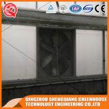 Промышленная гальванизированная дом стальной рамки стеклянная зеленая