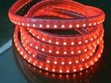 SMD5050 120LED/M 높은 볼트 LED 지구를 사용하는 옥외