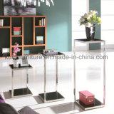 De ZijdieLijst van het Meubilair van de woonkamer voor Aangemaakt Glas wordt geplaatst