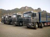 De Vrachtwagen van de Lading van Shacman 8X4