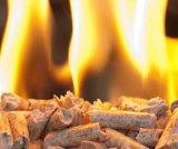 A madeira móvel quente da biomassa granula o fabricante de planta do combustível
