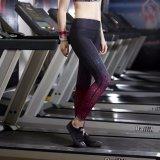 여자의 Sportwear 적당 의류 요가 Capris 고층 넓은 허리띠