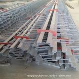 Joint de dilatation en acier pour la passerelle avec la norme internationale