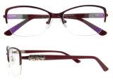 Glazen van uitstekende kwaliteit van de Slijtage van het Oog van de Manier van Eyewear van het Schouwspel de Optische