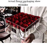 [موثر دي] [25بكس] [روس] واضحة أكريليكيّ [روس] [بوإكس/] بلاستيكيّة زهرة صندوق
