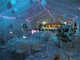 boog van de Lucht van de Tent van het Huwelijk van de Partij van de Gebeurtenissen van het Doel van de Structuur van het Aluminium van 15X20m de Multi