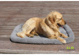 Design Quality Cheap Dog Beds Coral Fleece Pet Cofragem