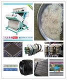 Hons+ globaler verwendeter Reis-Farben-Sorter mit Haus-Hausinstallation und Training