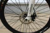 رخيصة كهربائيّة درّاجة [إ] درّاجة [ليثيوم بتّري] مدينة درّاجة