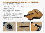 Горячая гитара цыганина типа Semler сбор винограда сбывания