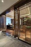 Diviseur de pièce intérieur conçu de portes coulissantes d'acier inoxydable en métal