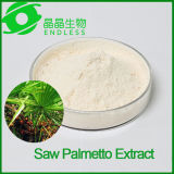 Vente en gros Saw Palmetto Extract Power for Men Prostate Health