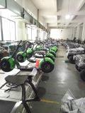 2016 Citycoco 유행 2 바퀴 전기 스쿠터, 성숙한 전기 기관자전차