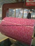 El surtidor PPGI PPGL de Shandong China prepintó las bobinas de acero del Galvalume