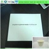 Ein seitliches PET überzogenes Papier für Trinkwasser-Cup
