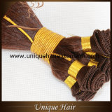 Double trame dessinée accessible de cheveu attachée par main de Remy