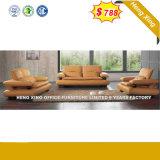 Muebles de Salón Moderno de la recepción del hotel sofá de cuero (HX-SN045)