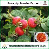 Extrait de poudre de Rosa Hip avec de la vitamine C pour les aliments et les boissons