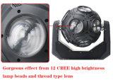 luz principal móvil del balompié de la viga de 12LEDs 15W RGBW 4in1 LED