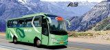 贅沢なバス(YCK6799H)