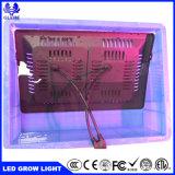 100W防水IP67完全なスペクトルのプラントランプの穂軸LEDは温室のために軽く育つ