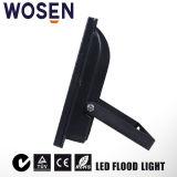 10W Holofote LED Holofote sabugo com marcação (IP65)