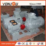Pompa di specialità di conservazione di calore di Ycb 400 Degc con la camicia di riscaldamento