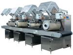Печатная машина цвета Roto