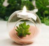 Vaso di fiore creativo del supporto di candela di figura rotonda dei mestieri e delle arti di vetro da tavolino domestici di Decpr