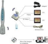 Высокое качество перорального камеры проводные и беспроводные камеры зубьев зуб видео камеры / Компьютер устные фотокамеры MD-950карты памяти SD