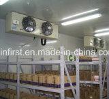 Nahrungsmittelspeicher-Kühlraum-Gefriermaschine-Meerestier-Frucht