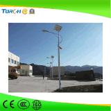 高品質の中国30W -60W IP65 LEDの安い価格の太陽街灯