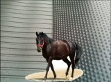 Non stuoie stabili durevoli della stalla del cavallo del pavimento della mucca di slittamento