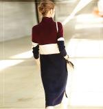 Vestido longo da cachemira das mulheres Vestido de tartaruga de manga comprida 16brdw015