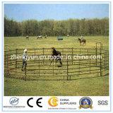 Het in het groot Gebruikte Comité van de Omheining van het Paard/het Comité van het Paard