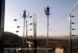 Turbine 3000W Maglev vento ad asse verticale con CE Rohs UL Certificate