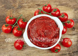고품질 통조림으로 만들어진 토마토 페이스트