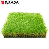 شنغهاي [إينردا] [غرين كلور] عادية - كثافة كرة قدم عشب