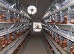 Ventilatore per il supermercato
