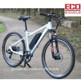 MTB elektrisches Fahrrad mit Lithium-Batterie