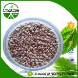 Fertilizzante solubile in acqua composto di NPK