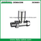 Valvola automatica d'ottone del radiatore di garanzia di qualità (AV3066)