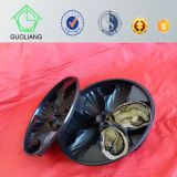 2015 heißes Selling Black pp. Disposable Plastic Oyster Tray Popular in Briten, US, Australien Market