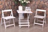Conjunto de jardim de madeira e mesa com dobrável ao ar livre (M-X1028)