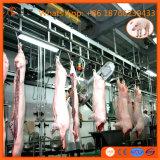 정결한 돼지 도살 선 푸줏간 주인 도살장 돼지 멧돼지 암퇘지 돼지 살해 기계 장비를 위한 도살장 기계장치