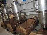 Router rotondo di CNC di falegnameria dell'incisione del legno di alta precisione per intagliare