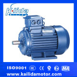 Motor de indução trifásico do Iec (Y2)